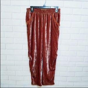 Aritzia Wildred Le Fou Velvet Ruched Pants Pockets